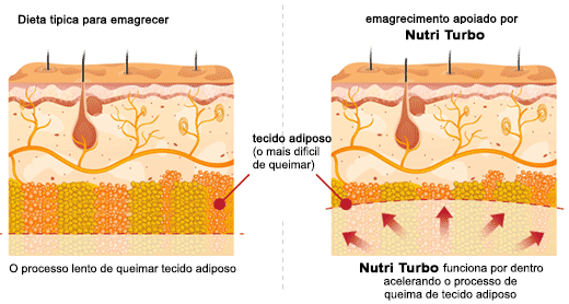 nutri turbo